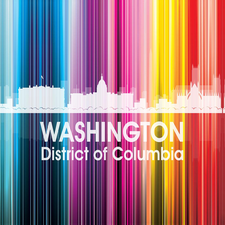 DiaNoche Designs Artist | Angelina Vick - City II Washington DC