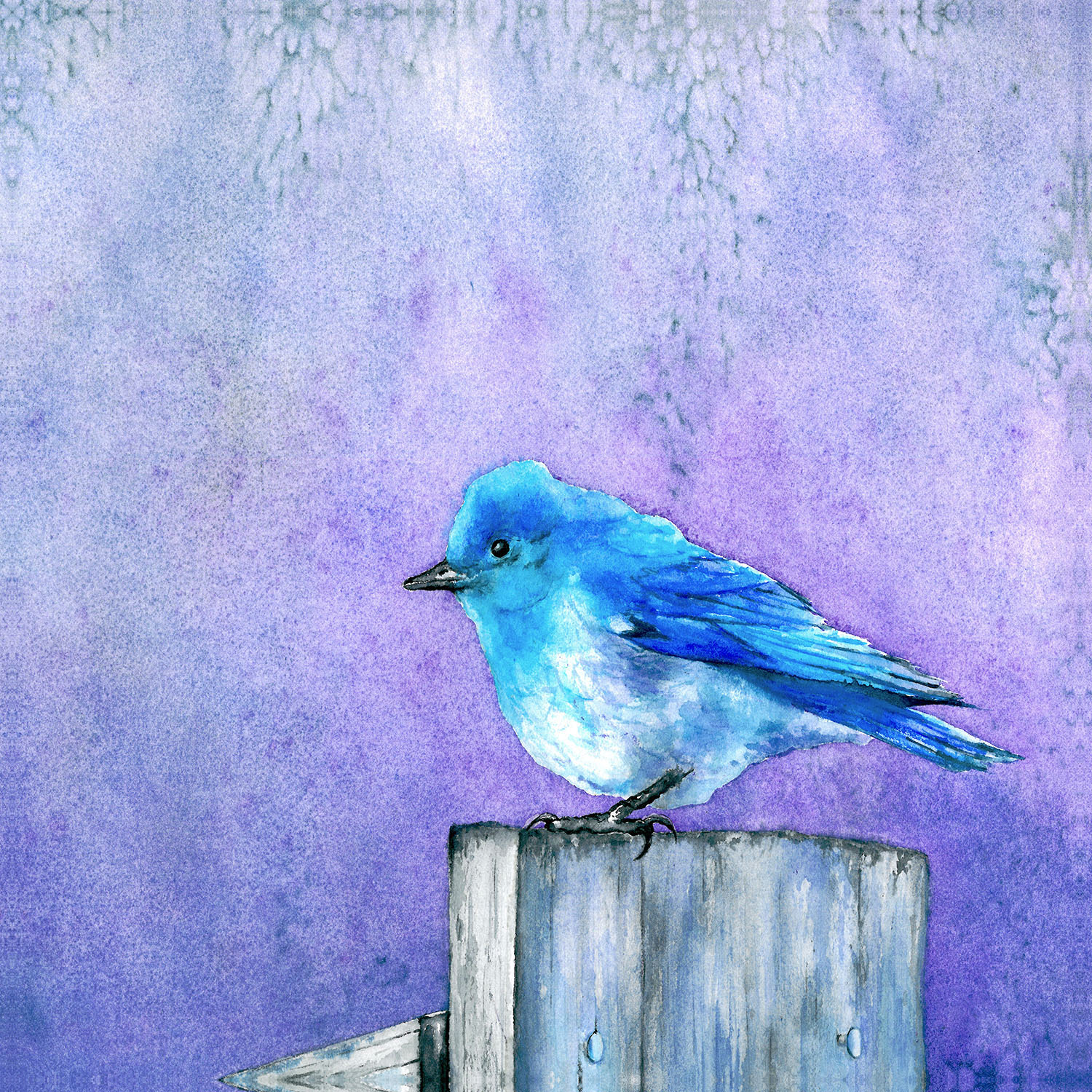 DiaNoche Designs Artist | Brazen Design Studio - Bluebird Bliss