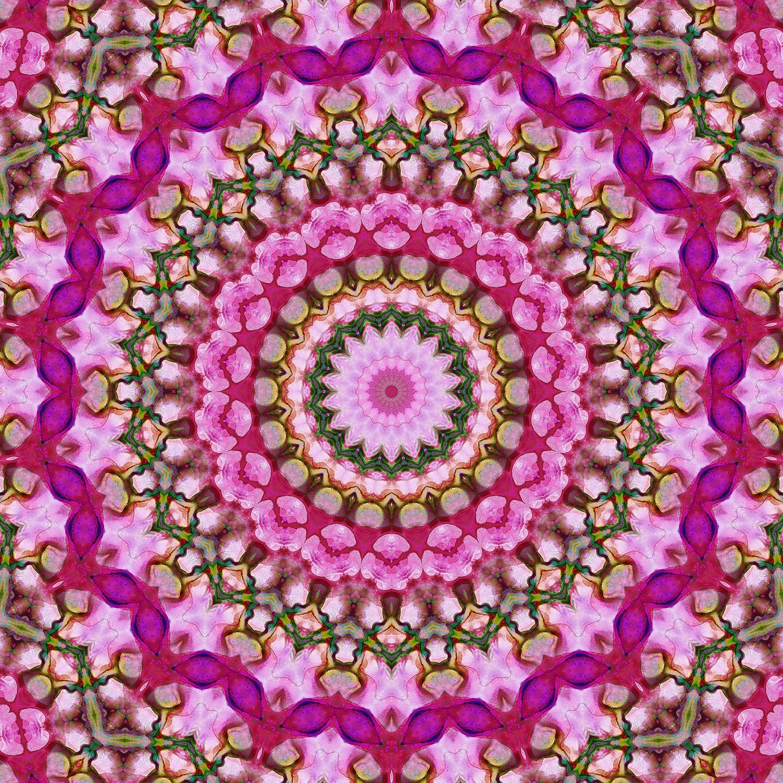 DiaNoche Designs Artist | Iris Lehnhardt - Color Wheel I