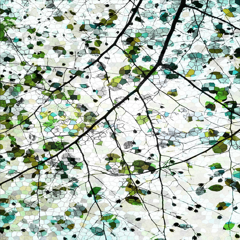 DiaNoche Designs Artist   Iris Lehnhardt - Green Veil