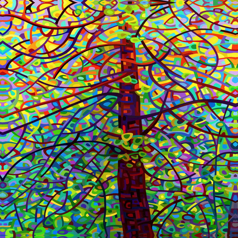 DiaNoche Designs Artist | Mandy Budan - Kaleidoscope