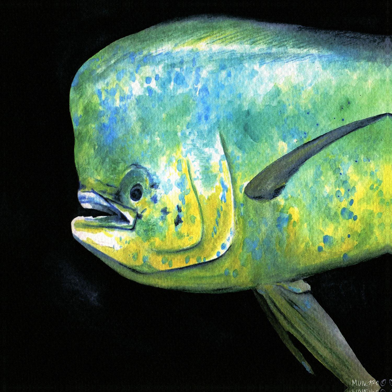 DiaNoche Designs Artist   Marley Ungaro - Deep Sea Life - Mahi Mahi Fish