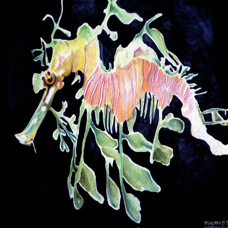 DiaNoche Designs Artist   Marley Ungaro - Deep Sea Life - Sea Dragon