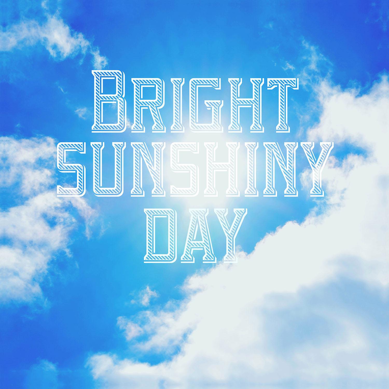 DiaNoche Designs Artist | Rachel Burbee - Bright Sunshiney Day