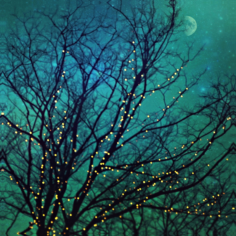 DiaNoche Designs Artist | Sylvia Cook - Magical Night