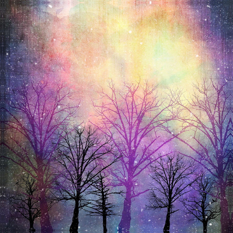 DiaNoche Designs Artist | Sylvia Cook - Trees