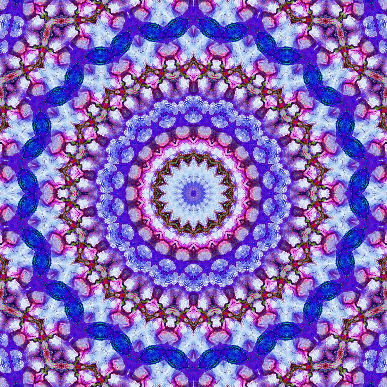 DiaNoche Designs Artist | Iris Lehnhardt - Color Wheel II